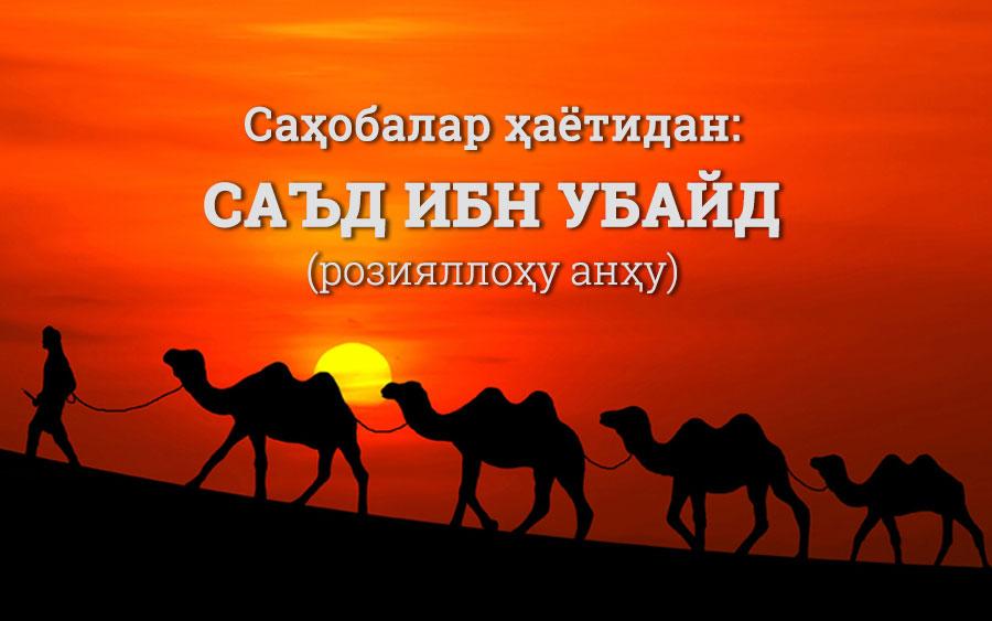Sa'd ibn Ubayd